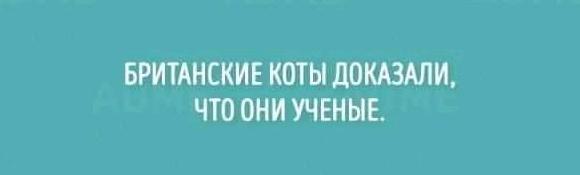 http://sd.uplds.ru/6AamB.jpg
